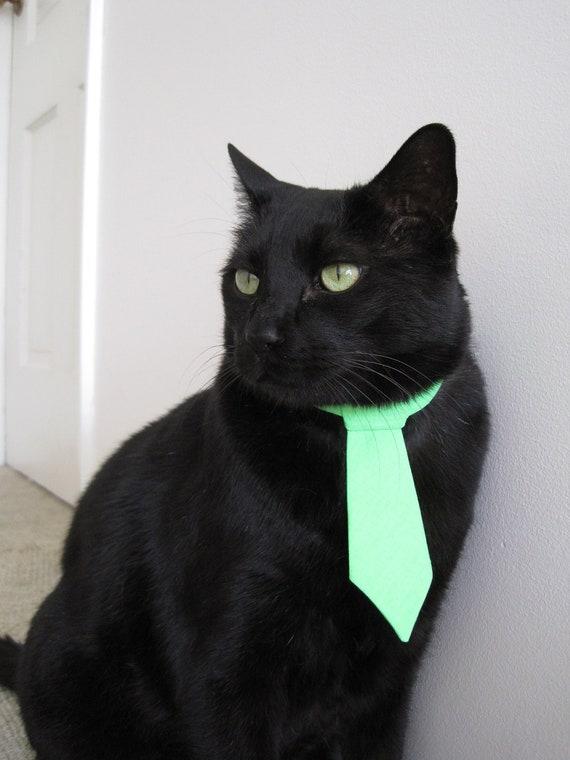 Cat Tie - It's Easy Being Green