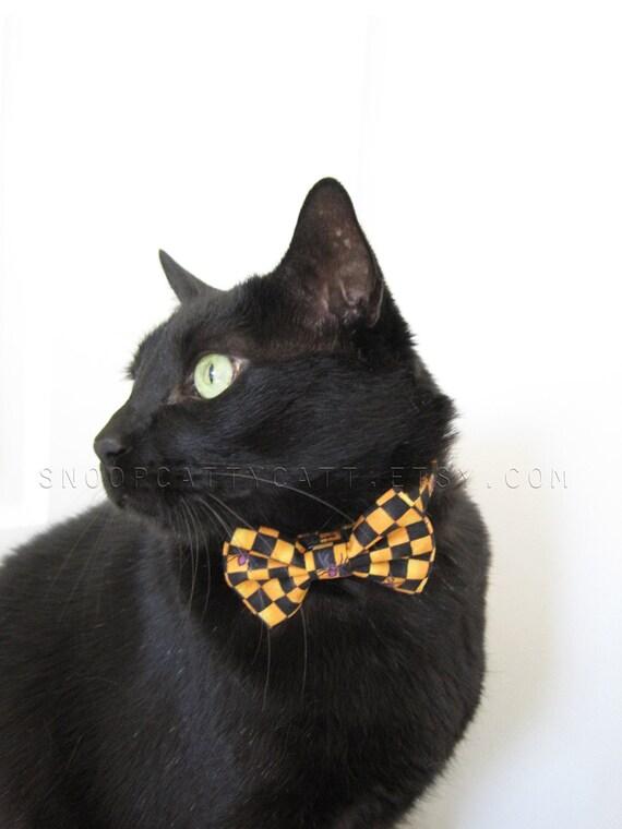 Halloween Cat Bow Tie - Spellbinder
