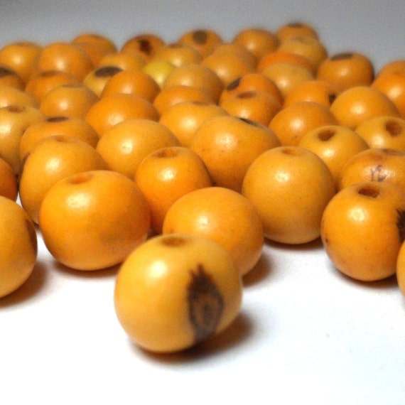 Acai Beads - Natural Seed Beads Summer Squash Yellow 30 Pieces