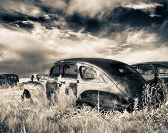 Fine Art of Abandon Classic cars