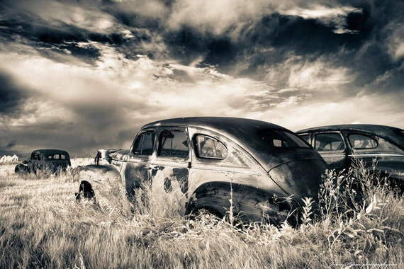 Fine Art of Abandon Classic cars