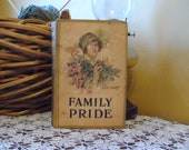Family Pride or Purified by Suffering by Mary J Holmes 1920s vintage book fiction set during the Civil War
