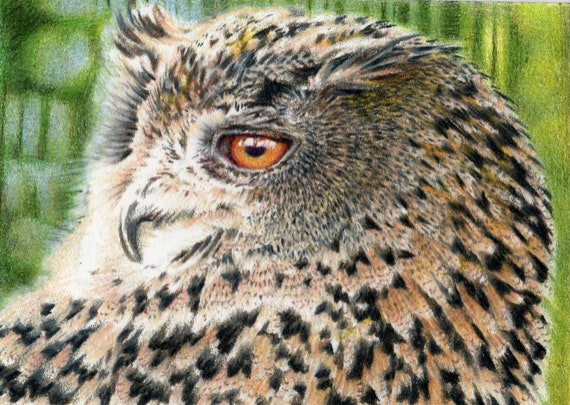 Original ACEO for the WWF - 'Giving a Hoot' Eagle Owl (Day 14)