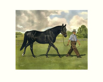 "EASTON International Racehorse by Allen F. Brewer Jr. - Print size 17"" X 22"", Image Size 11"" X 14"" - Color"