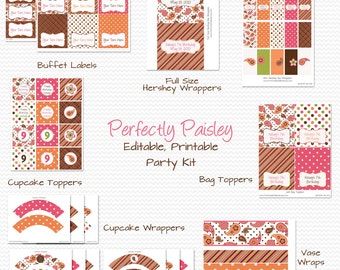 Paisley Birthday Party Printables, Girl's Birthday Party Supplies, Pink and Orange  -- Editable, Printable, Instant Download