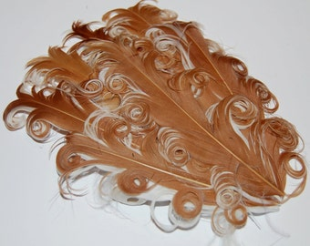 Curly Feather Pad -  Two Tone  Caramel light brown on White  FP232 - (1 pc)  Tan on White
