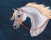 Gray Arabian Horse Equine Show Costume 8x10 Original Oil Painting