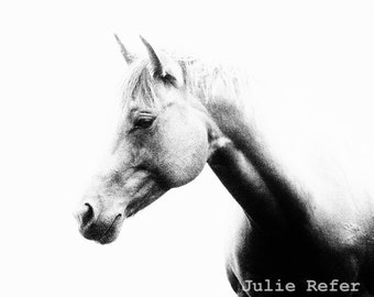 Horse Photography Black and White Abstract Horse Photo