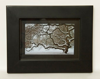 Winter Tree Framed Photograph Landscape Photography Black and White Nature Snow Frame Home Decor Monochrome Wall Art Stocking Stuffer 7X9