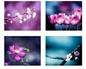 Flower Photography Set - Four Photographs - purple dark blue prints pink plum white floral nature photo set tulips branches wall art violet