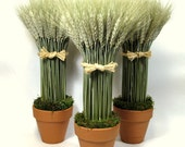 Wheat Arrangement, Wheat Sheaves, Dried Floral, Potted Wheat Sheaf, Wheat