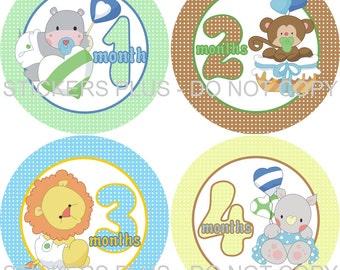 Monthly Baby Boy Milestone Stickers PRECUT Bodysuit Precut Baby Month Stickers Plus FREE Gift Jungle Zoo Animals Hippo Monkey Lion Rhino