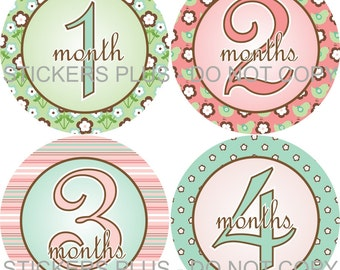 Baby Month Stickers Plus FREE Gift Girl Pink Green Flower Flowers Bird PRECUT Bodysuit Stickers Photo Prop Baby Month Milestones