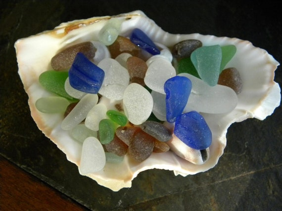Sea shell filled with sea glass, shells, 50 pieces