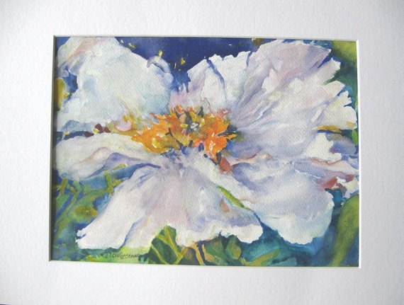 White Poppy  floral flower  original watercolor 12x16 matted white loose style original art