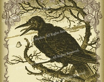 Victorian Goth Antique Raven and Scrollwork - 4x6 Inch Single Digital Image - Instant Download & Print
