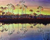 Pine Reflections - Evening Calm