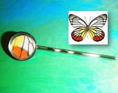 Real Butterfly Hair Pin - Delias Hyparete