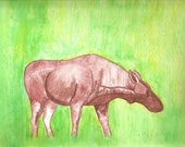Original Watercolor Moose on loose Canvas