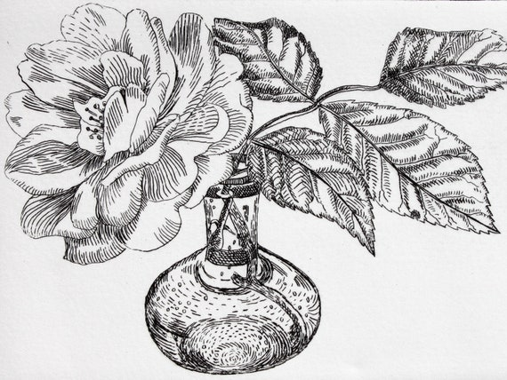 Single Rose - Signed Original floral hand pulled black and white Etching A/P