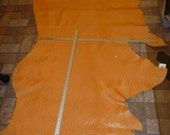 """Leather 25 sq ft Orange Dreamsicle Ostrich / Emu Embossed Cowhide 87""""x30"""" PeggySueAlso"""