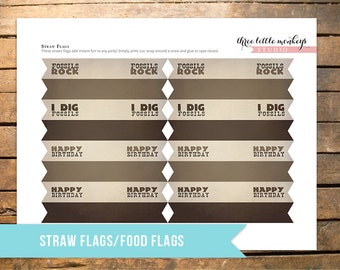 Fossil Hunter Straw Flags or Food Flags