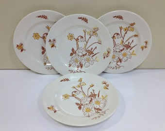 Americana Dreamer Royal China Dessert Plates Ceramic Dinnerware