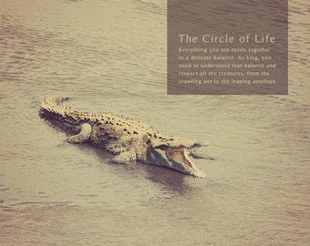 Crocodile Photo, Alligator Photo, Crocodile Art, Crocodile Print, Alligator Art, Alligator Print, Crocodile Gift, Tarcoles River