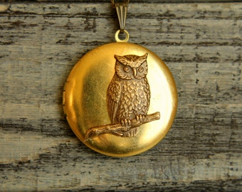 Perched Owl Locket Necklace