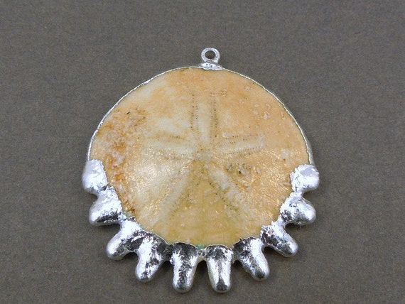 Fossilized Sand Dollar Sanddollar Fossil with Electroplated Silver pendant Millions of years old available in 24k gold too
