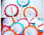24 Custom / Personalized Cupcake Toppers