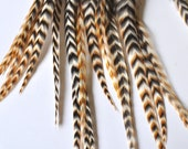 "6.5"" - 8.5"" LONG 19 Count Ginger Grizzly Barred Extension Feathers Wholesale Extention"