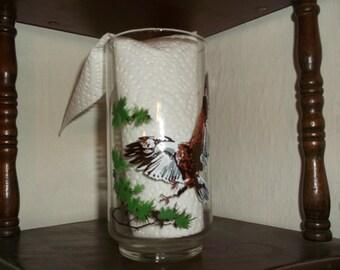 Vintage 1978 BURGER CHEF Endangered Species Series The Bald Eagle Promotional Glass