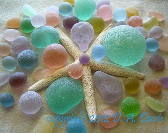 11 x 14 Beach Sea Glass Art Print Photo Print-B Starfish Explosion