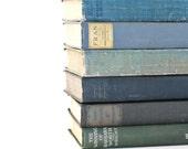 Vintage Blues 6 Book collection Interior Design Vintage Book Decor