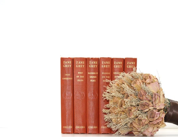 Reserved for Dorendamc-Vintage 6 Book Collection Peach Wedding Interior Design Vintage Book Decor