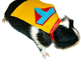 Personalized / Custom Guinea pig costume - Example Superman C & T capes