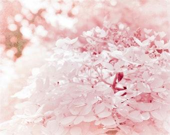 Pastel Pink Valentines Hydrangeas Botanical Nature Shabby Chic Nursery Home Decor Fine Art Photography