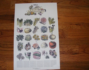 Burpee Seed Advertisement  A to Z Flowers and  Vegetables