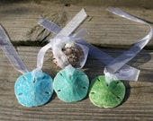 Party favor - seashell ornaments - christmas ornaments - wine necklace - wine charm - sand dollars - green - blue