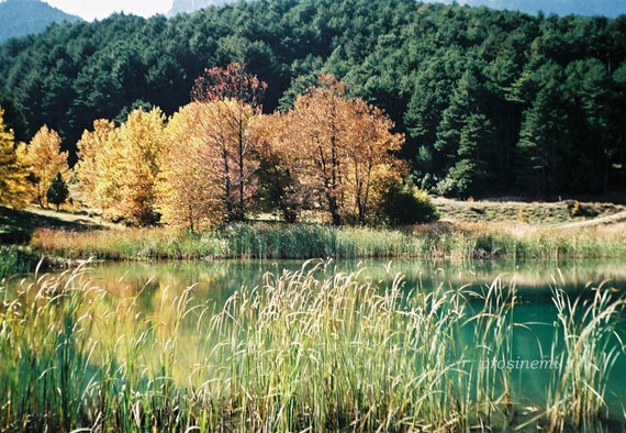 Fall Nature photo, home decor, landscape photo, fine art print photography of a lake, forest
