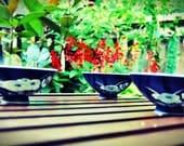 Vintage Asian Flare Rice Bowls- Set of 3