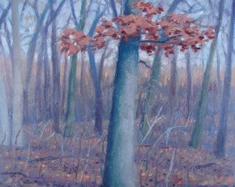 Oak Tree, Late Fall - original painting