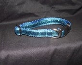 Turquoise Sparkle adjustable collar or martingale