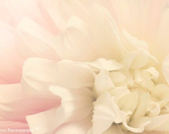 Flower Photography - Nursery Art - Dahlia Photograph - Pink Flower - Macro Photography - Fine Art Photography Print - Pink White Home Decor
