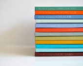 70s Sewing Book Collection - Bright and Retro