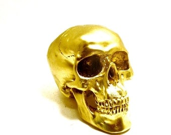 skulls, human skull head, gold, skull art, anatomy, modern home decor, glam, metallic