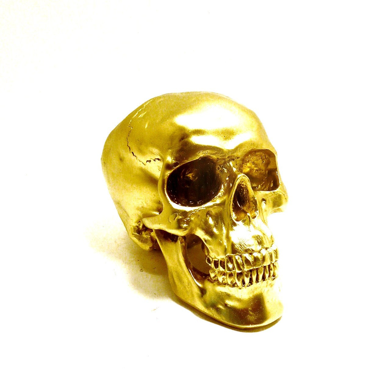 SKULLS HUMAN SKULL HEAD GOLD ART ANATOMY MODERN HOME DECOR GLAM METALLIC On The Hunt