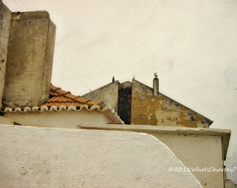ABSTRACT WITH SEAGULLS, Fine Art Photography, Ericeira, Portugal, 10 x 8