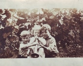 "Vintage Early 1900s Photograph, ""It's my turn"", Edwardian Children with Trumpet"